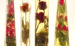 Petróleos con la especia en botellas imagen de archivo