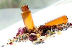 Petróleos esenciales Aromatherapy Imagen de archivo libre de regalías