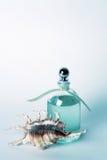 Petróleos esenciales en botella y Seashell claros Imagenes de archivo