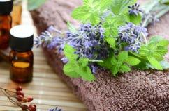 Petróleos essenciais com ervas Foto de Stock