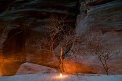 Petra在晚上 库存图片