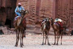 Petra在约旦哈希姆王国 库存照片