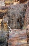 Petra的五颜六色的岩层在约旦 免版税库存照片