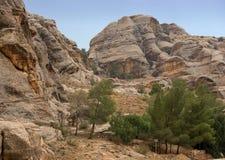 Petra的五颜六色的岩层在约旦 库存图片