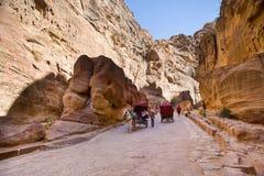 Petra,约旦- 2017年3月9日, :马运载游人throug 免版税库存照片
