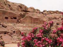 Petra αμφιθέατρο Ρωμαίος Στοκ Εικόνα