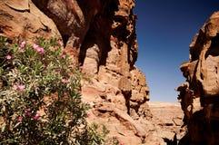 PETRA, Ιορδανία στοκ φωτογραφία
