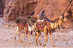 PETRA, ΙΟΡΔΑΝΙΑ - 28 ΑΠΡΙΛΊΟΥ 2016: Βεδουίνο άτομο στην καμήλα Στοκ φωτογραφία με δικαίωμα ελεύθερης χρήσης