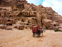 PETRA, ΙΟΡΔΑΝΙΑ: Μεταφορά μεταφορών τουριστών στη Petra PETRA της Ιορδανίας Στοκ φωτογραφίες με δικαίωμα ελεύθερης χρήσης