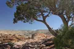 PETRA τοπίων της Ιορδανίας Στοκ Φωτογραφία
