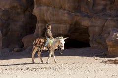 PETRA -约旦2015年12月25日:乘坐驴的阿拉伯男孩 库存图片