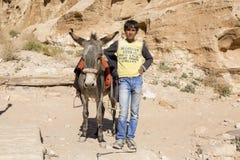 PETRA -约旦2015年12月25日:有他的驴的阿拉伯男孩 库存图片