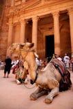 Petra. The acient city of Petra Royalty Free Stock Image