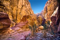 Petra. In Jordan - city carved out of the rock royalty free stock photography