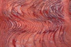 Petra, canyon, tomb, Petra Archaeological Park, Jordan, Middle East, mountain, desert, landscape, climate change. Jordan, Middle East 02/10/2013: veins of Stock Image