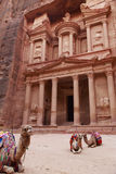 Petra. Camels sitting by the treasury , Petra Royalty Free Stock Photos
