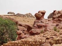 petra canyon Immagini Stock