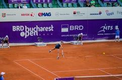 Petra Cetkovska bawić się QF Bucharest Otwiera WTA Zdjęcie Stock