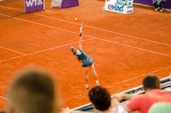 Petra Cetkovska playing the QF of Bucharest Open WTA Stock Photography