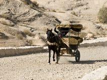 PETRA em Jordão Fotografia de Stock Royalty Free
