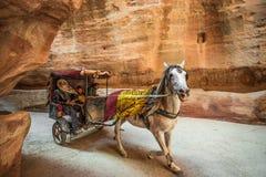PETRA, JORDÂNIA - 17 DE MARÇO DE 2016: Três beduínos que montam um cavalo Ca Fotos de Stock Royalty Free
