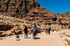 PETRA, Jordão Fotografia de Stock Royalty Free