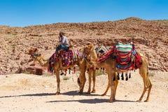 PETRA, Jordão Imagens de Stock
