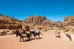 PETRA, Jordão Fotografia de Stock