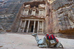 Petra, Jordan Royalty Free Stock Photo