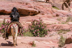 PETRA, JORDAN - APRIL 30, 2016: Bedouin on donkeys Royalty Free Stock Photo