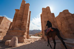 Petra in Jordan. Gate that leads to Colonnaded street in front of the Great Temple in Petra in Jordan Stock Image