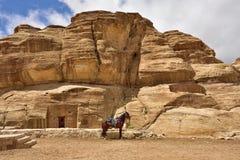 Petra, Jordan Stock Images