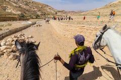 Petra Jordan. Horses in Petra the lost city in Jordan Royalty Free Stock Images