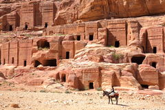 PETRA, JORDAN - MARCH 11, 2016: The Street of Facades with a little Bedouin boy riding his donkey in the foreground Stock Photos
