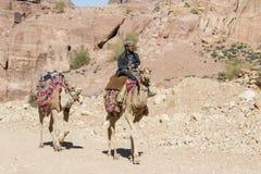 """Petra, Jordanië †""""25 December, 2015: Bedouin personenvervoer een kameel Royalty-vrije Stock Afbeeldingen"""