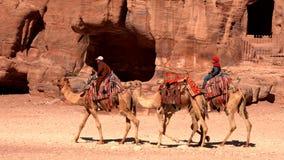 Petra, Jordanië - 2019-04-23 - de Kamelen van de Jongensrit terug naar Schatkist stock video
