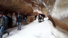 Petra, Jordanië - 2019-04-23 - Paardvervoer brengt Toeristen door Siq 1 stock video