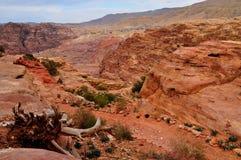 Petra - Jordania Στοκ Φωτογραφίες