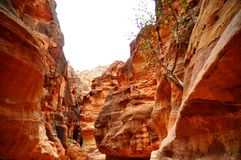Petra - Jordania. Widok na kanion Petra Royalty Free Stock Images