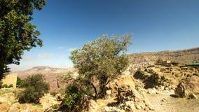 Petra, Jordania almacen de metraje de vídeo