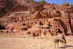 PETRA, JORDANIA: Ulica fasady z Beduińskim mężczyzna jedzie jego osły w przedpolu Obraz Royalty Free