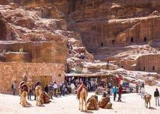 PETRA, Jordanie - 9 mars 2017 : Chameaux dans de camp des ruines bédouines près photo stock