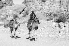 "PETRA, Jordanien-†""am 25. Dezember 2015: Beduinischer Mann, der ein Kamel reitet Lizenzfreie Stockfotos"