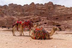 PETRA Jordanien Lizenzfreie Stockbilder