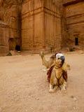 PETRA - Jordanien Stockfoto