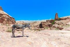 PETRA in Jordanien stockfoto