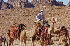 Petra Kingdom della Giordania Mandriani del cammello della tribù di Nabataeans Immagini Stock