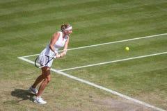 Petra Kvitova at Wimbledon stock photos
