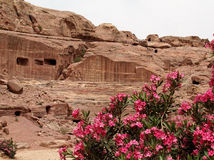 petra Römisches Amphitheater Stockbild