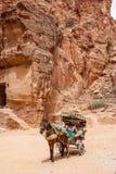 Petra siq在约旦 图库摄影
